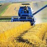 L'agriculture : une mauvaise année 2016